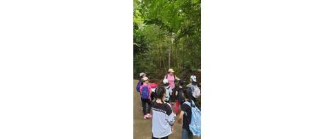 Field trip to Bukit Timah Nature Reserve